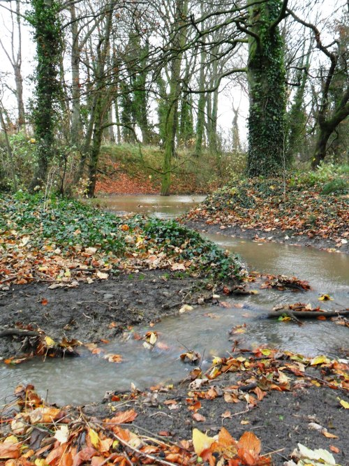 Flood waters in The Dingle Woods, Aldridge, Walsall, England