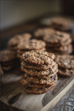 modernhepburn:  via: Adventures in CookingOatmeal hazelnut chocolate chip cookies