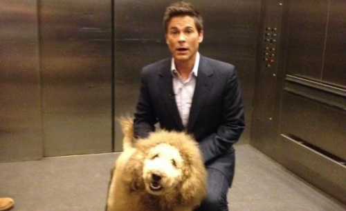 Everybody Panic! Here's Rob Lowe In An Elevator With LION DOG!