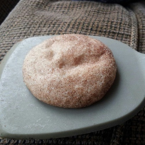 Snickerdoodle perfection