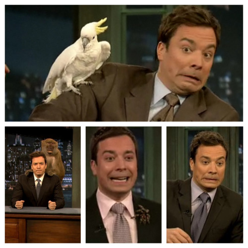 baldeagleheadsandfabergeeggs:  Jimmy Fallon is afraid of animals. Yet he's STILL adorable.