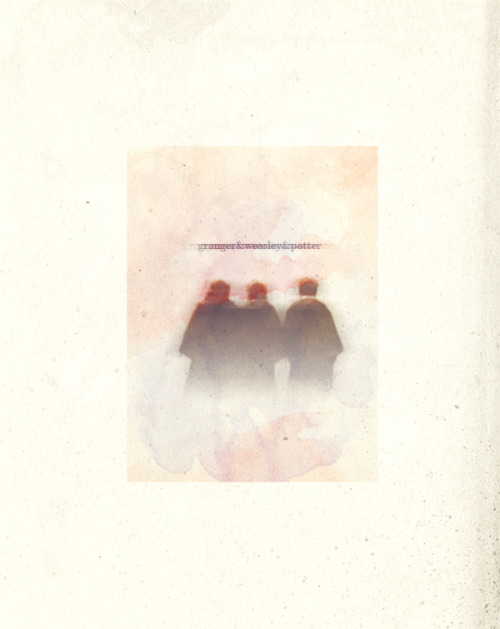 thestagpatronus:  hermione & ron & harry