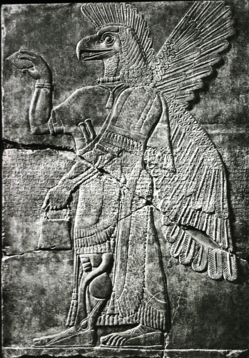 worldofmesopotamia:  Wall relief, griffin-man, Nimrud.