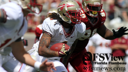 The Florida State Seminoles took to Bobby Bowden Field at Doak Campbell Stadium on Saturday, April 13th for the annual Spring Football Game in which the Gold team defeated the Garnet team 40-24.
