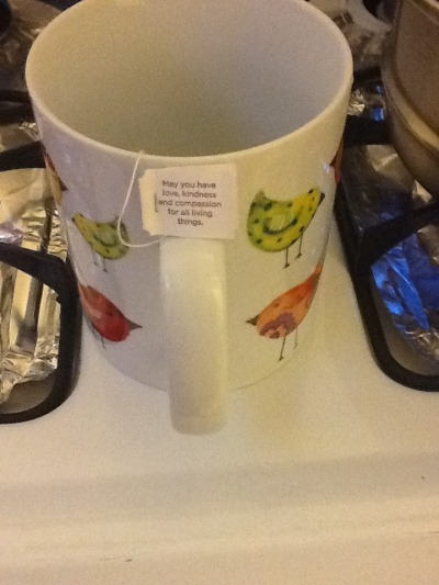 "anasimperfection:  Yogi teas are amazing. They taste delicious and each tea bag has a nice message. ""May you have love, kindness, and compassion for all living things"""