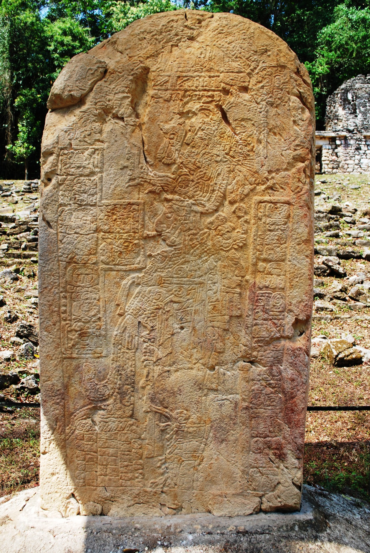 Ancient Mayan unlabled stele in the Grand Plaza of Yaxchilan, Chiapas, Mexico. Photo courtesy Thelmadatter