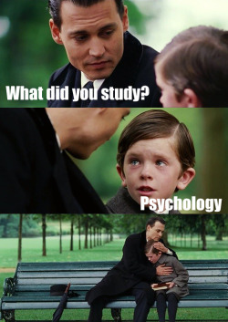 What did you study?