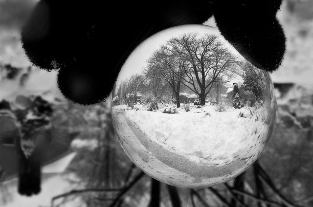 hikingphotog:  Snow-Globe on Flickr. This past Friday it was a nice snowy morning and it was coming down in a swirling manner that reminded me of a snow-globe So I grabbed my 80mm oculus and snapped a few shots after shoveling the driveway this morning before heading to work.