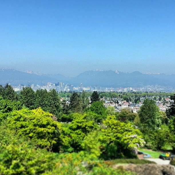 at Queen Elizabeth Park