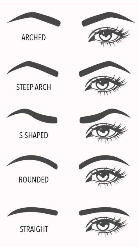 A visual guide to eyebrow shapes for Eyebrow templates printable