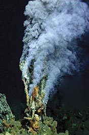 "Blowing Smoke: Hydrothermal Howdy-Doo-Dees… Some UK scientisties have recently discovered yet another mind-blowing set of hydrothermal vents on the ocean floor in the Caribbean. This latest group have been found at deeper depths than any others (only about 5,000 metres!). They are also reportedly the hottest yet discovered (around 400C, compared to surrounding water temperatures of only around 4C!)  This is all very well and very good, you may very well declare, but what the very heck is a hydrothermal vent anyway?!? What indeed. So here you are - you're very own basic introduction to hydrothermal vents, aka deep sea vents, courtesy of those clever whomevers over at Wikipedia (I'd write a bling-lingoed up EcoLOLogist-style version, but quite frankly, I'm too tired. Zzzzzz…….)  A hydrothermal vent is a fissure in a planet's surface from which geothermally heated water issues. Hydrothermal vents are commonly found near volcanically active places, areas where tectonic plates are moving apart, ocean basins, and hotspots. Hydrothermal vents exist because the earth is both geologically active and has very large amounts of water on its surface and within its crust. Common land types include hot springs, fumaroles and geysers. Under the sea, hydrothermal vents may form features called black smokers. Relative to the majority of the deep sea, the areas around submarine hydrothermal vents are biologically more productive, often hosting complex communities fueled by the chemicals dissolved in the vent fluids. Chemosynthetic archaea form the base of the food chain, supporting diverse organisms, including giant tube worms, clams, limpets and shrimp. Active hydrothermal vents are believed to exist on Jupiter's moon Europa, and ancient hydrothermal vents have been speculated to exist on Mars.  Some hydrothermal vents form roughly cylindrical chimney structures. These form from minerals that are dissolved in the vent fluid. When the superheated water contacts the near-freezing sea water, the minerals precipitate out to form particles which add to the height of the stacks. Some of these chimney structures can reach heights of 60 m. An example of such a towering vent was ""Godzilla"", a structure in the Pacific Ocean near Oregon that rose to 40 m before it fell over. A black smoker or sea vent is a type of hydrothermal vent found on the seabed, typically in the abyssal and hadal zones. They appear as black, chimney-like structures that emit a cloud of black material. The black smokers typically emit particles with high levels of sulfur-bearing minerals, or sulfides. Black smokers are formed in fields hundreds of meters wide when superheated water from below Earth's crust comes through the ocean floor. This water is rich in dissolved minerals from the crust, most notably sulfides. When it comes in contact with cold ocean water, many minerals precipitate, forming a black, chimney-like structure around each vent. The deposited metal sulfides can become massive sulfide ore deposits in time. Black smokers were first discovered in 1977 on the East Pacific Rise by scientists from Scripps Institution of Oceanography. They were observed using a deep submergence vehicle called ALVIN belonging to the Woods Hole Oceanographic Institution. Now, black smokers are known to exist in the Atlantic and Pacific Oceans, at an average depth of 2100 metres. The most northerly black smokers are a cluster of five named Loki's Castle, discovered in 2008 by scientists from the University of Bergen at 73°N, on the Mid-Atlantic Ridge between Greenland and Norway. These black smokers are of interest as they are in a more stable area of the Earth's crust, where tectonic forces are less and consequently fields of hydrothermal vents are less common. The world's deepest black smokers are located in the Cayman Trough, 5,000 m (3.1 miles) below the ocean's surface. White smoker vents emit lighter-hued minerals, such as those containing barium, calcium, and silicon. These vents also tend to have lower temperature plumes. These alkaline hydrothermal vents also continuously generate acetyl thioesters, providing both the starting point for more complex organic molecules and the energy needed to produce them. Microscopic structures in such alkaline vents ""show interconnected compartments that provide an ideal hatchery for the origin of life"".  Find out more about them and their super-heated awesomesauce here."
