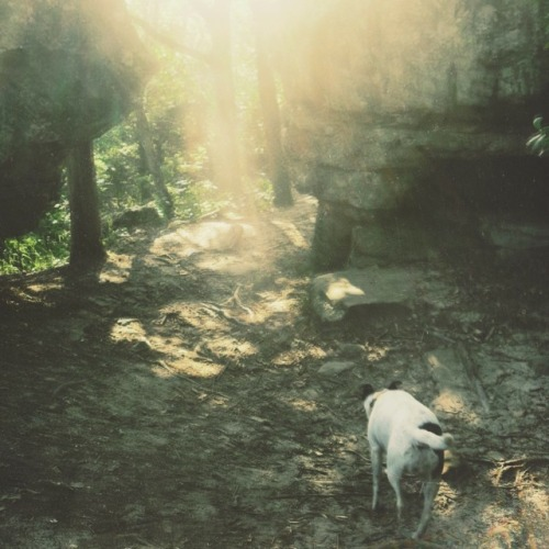 LISTEN: MOOR HOUND - STIFLED SPIRIT | There's a great new moor hound cassette out now via Viva La Records.  Have a listen to it, then nab one of 100 copies by visiting the SITE.