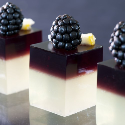 feeblerton:  suffusionofyellow:  Sweet Good GOD - Gourmet Jello Shots (with recipes!) from Jelly Shot Test Kitchen they're just so damn pretty  gimme  OwO