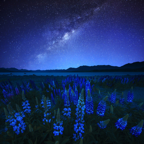 Midnight Blue by AtomicZen : ) on Flickr.