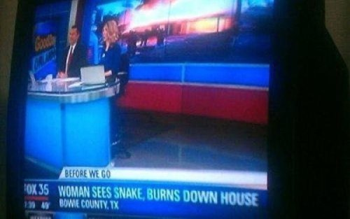 Woman Sees Snake, Acts Rationally Hopefully she had snake insurance.