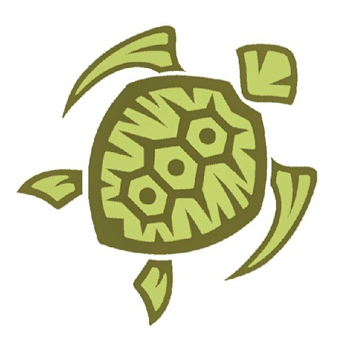 A closeup of our beloved #turtle #logo ! #araxaorganic #stretchedears