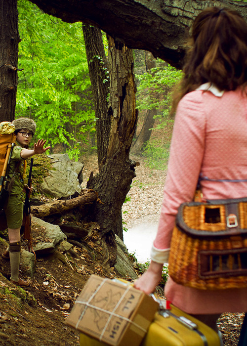 cinyma:  Moonrise Kingdom, 2012.