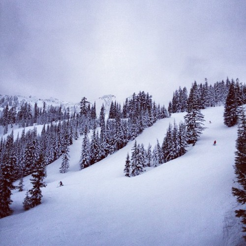 Playing hooky. (at Stevens Pass Ski Area)