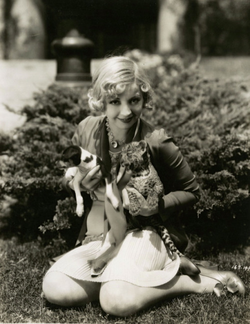 maudelynn:  Alice White, with a puppy and a leopard cub, in a promo for The Girl From WoolWorth's c.1929