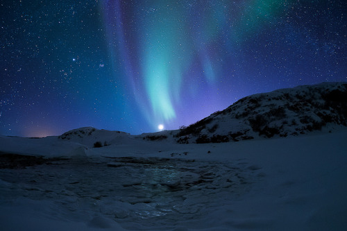 spacettf:  Arctic Beauty by Norseman1968 on Flickr.