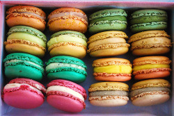 prettygirlfood:  Macarons  OH MY GOD I THOUGHT THESE WERE PRETTY PATTIES