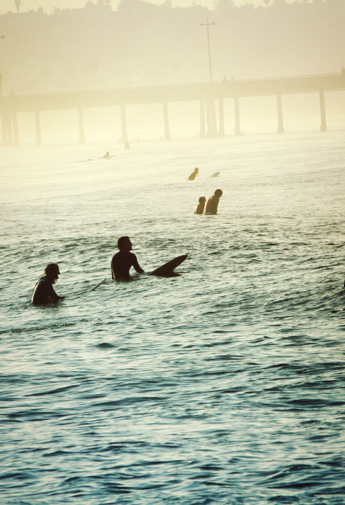 highenoughtoseethesea:  dawn patrol