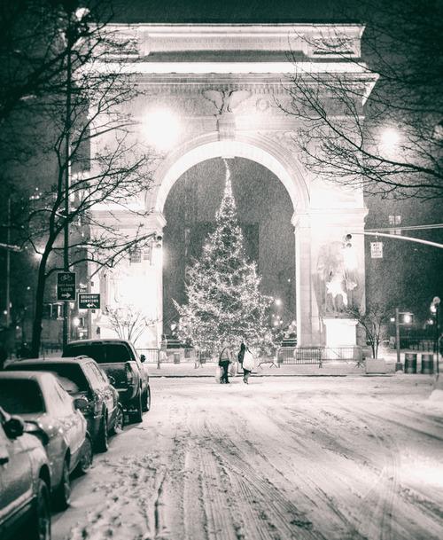 Christmas Tree In Ny: New York City Photography