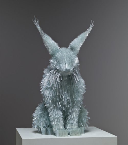 Whoa. Amazing shattered glass animal sculptures by Marta Klonowska