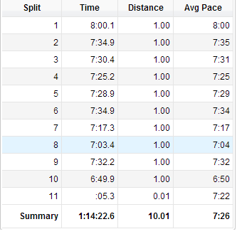 wanted to try a longish-run progressionish run as my last one before the rock'n'roll. feltgoodman as a sunday afternoon cruise in SD