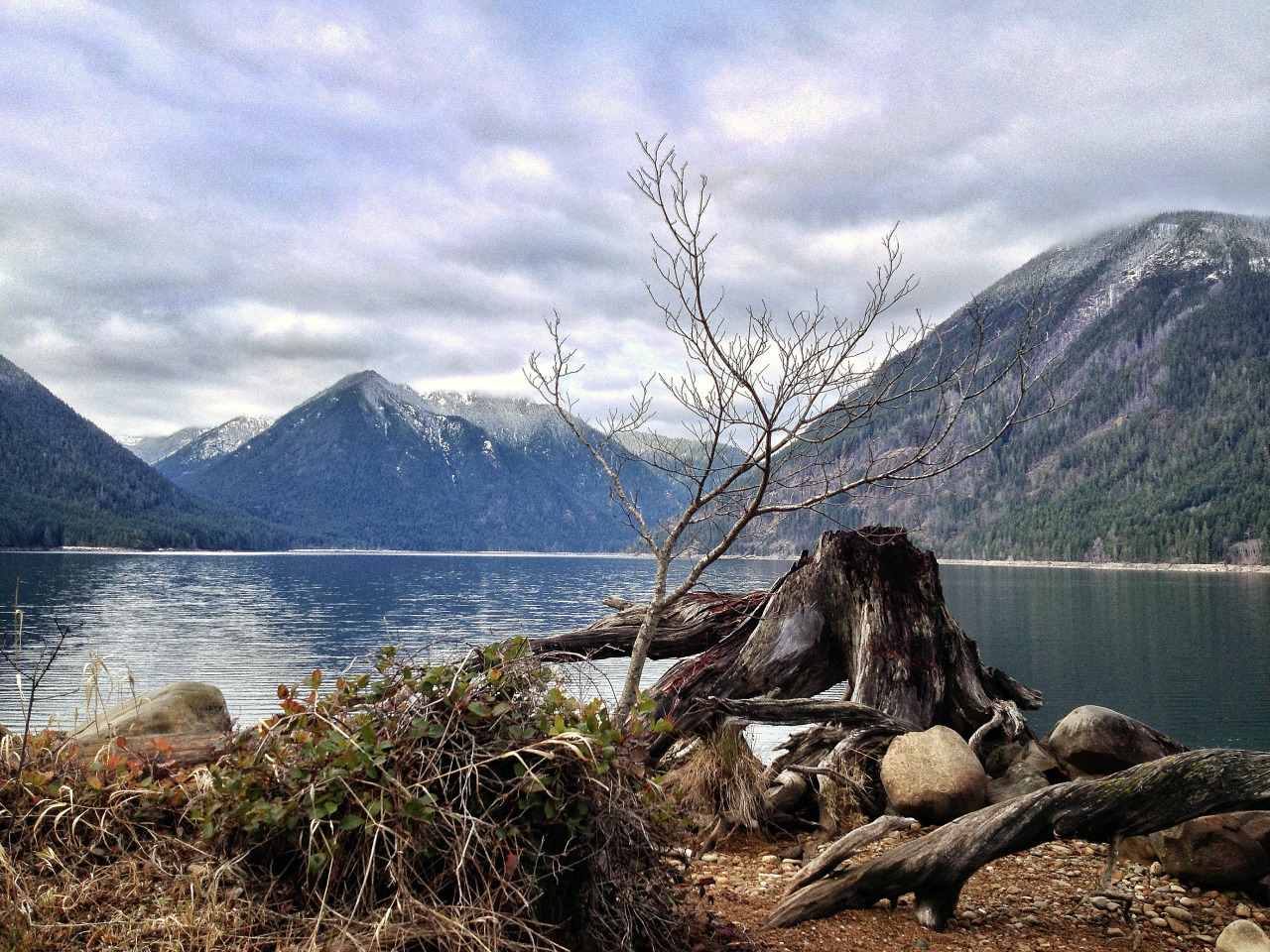Lake Cushman, Olympic National Forest, WA | 2013