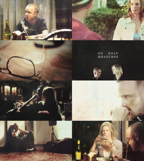 Breaking Bad AU || Skyler and Jesse team up to take down Walt