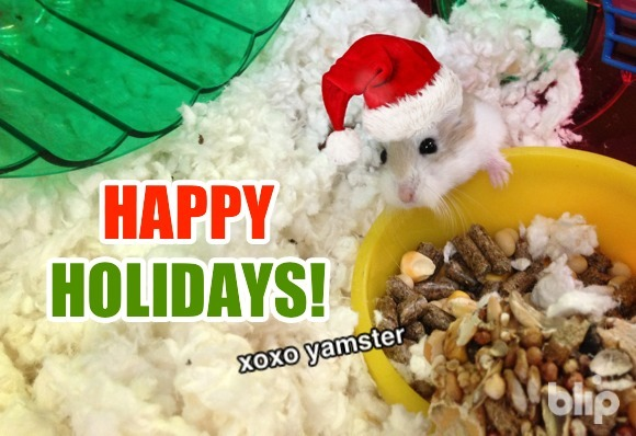 Happy holidays from our family to yours! Yamster wishes you all good tidings of cheer. Catch the team singing Jingle Bells at the end of this episode of The Show You're Watching: The One with Christmas Dinosaurs