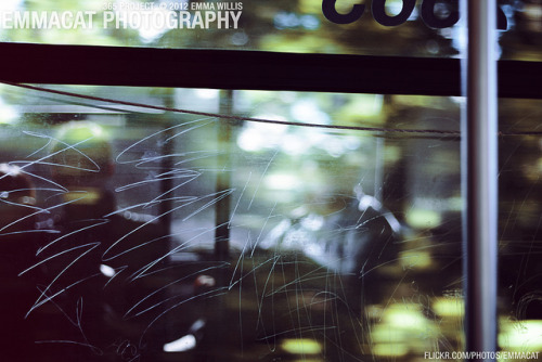 Window Scratches - 171/365 on Flickr.Via Flickr: Sorry it's now 2013 and I'm still working on the editing from the 365 project from 2012. I am happy to say that I did take photos every day!  Reflection shot while the bus was in motion… really liked how this turned out.