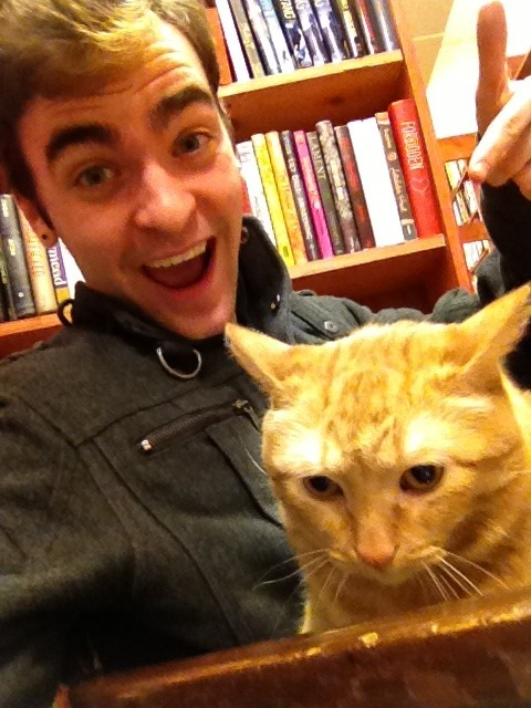 Despite his expression, this cat loved me.  He was so cuddly!