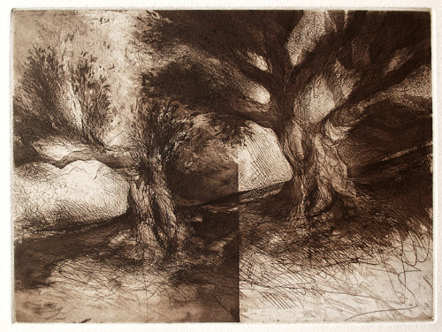 yama-bato:  Orchard Trees. MEDIUM:Etching and aquatint ARTIST:Jake Muirhead http://oldprintgallery.com