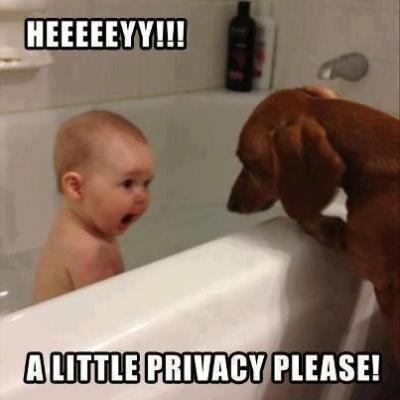 bell-tiff:  Heeeeeeeeeeey!! a little privacy please!