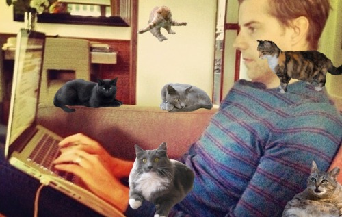 Clearly helping Andrew respond to questions. So helpful. That one cat is even proofreading.