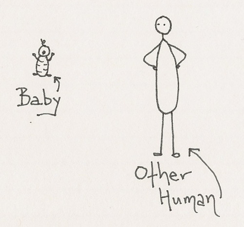 What You Should Know About Babies They're smaller than other humansThey don't finish what they startThey don't know how to textBabies cannot work for more than 4 hours in a dayLook Who's Talking is not a documentary Some people think they see Vienna Sausages, when really they're looking at baby hands Babies can't understand youThey are terrible spellersBabies have no favorite teams
