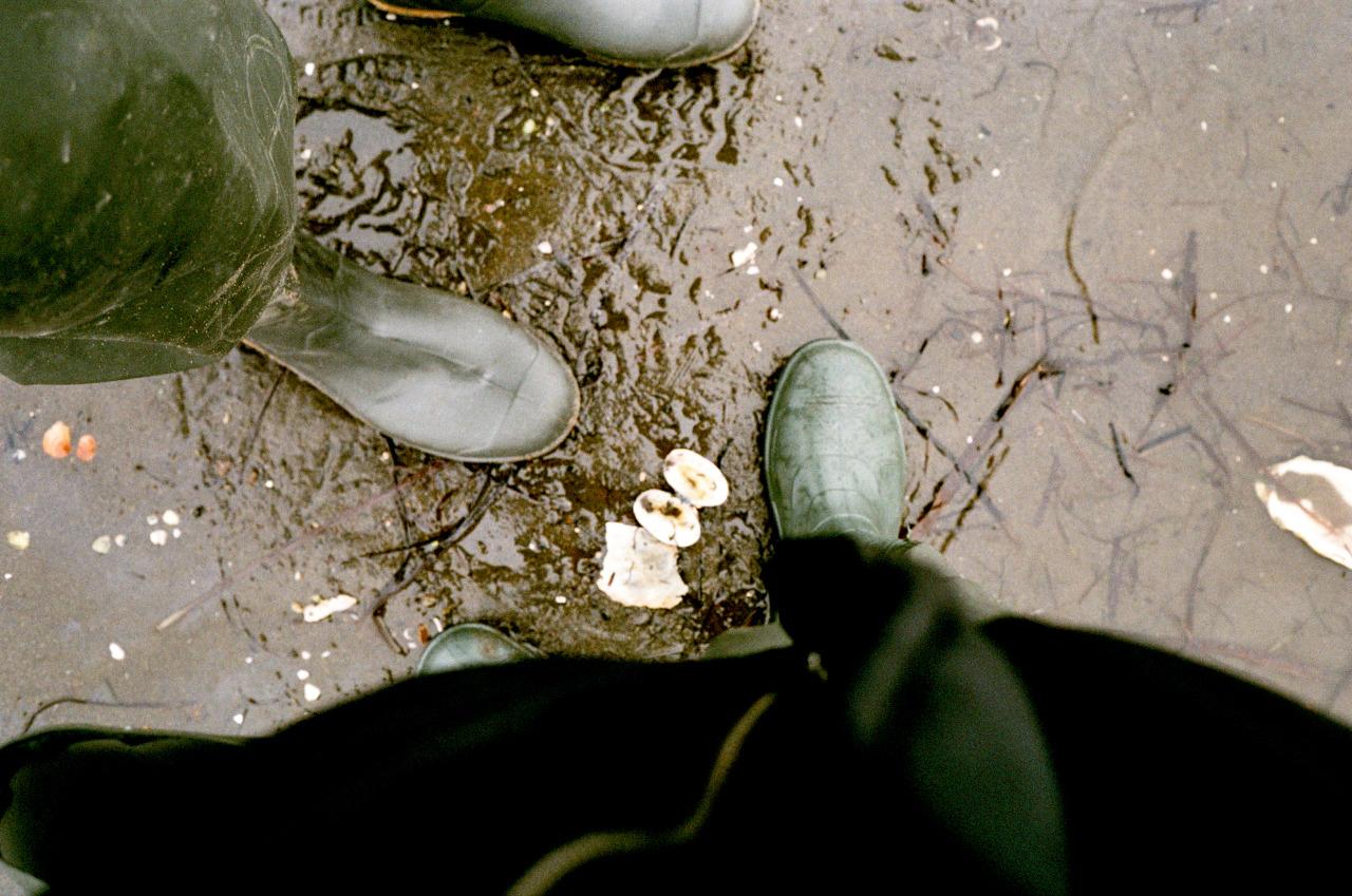 ArchivesRussia / Sakhalin | Summer 2020 #35mm#35mm film#35mm photography#film photography#filmisnotdead#film#ishootfilm#shotonfilm#leicaminilux#leicaphotography#analogue#analog photography#original photography#naturephotography#photography#photo#photooftheday#fotografia#фотография#плёночная фотография#плёнка#сахалин#travelphotography #travel photo diary #Russia