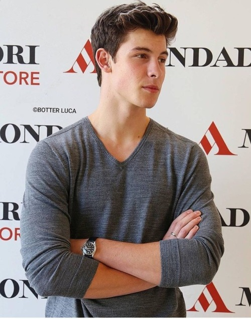 shawn mendes shawn peter raul mendes shawn mendes imagine shawn mendes smut