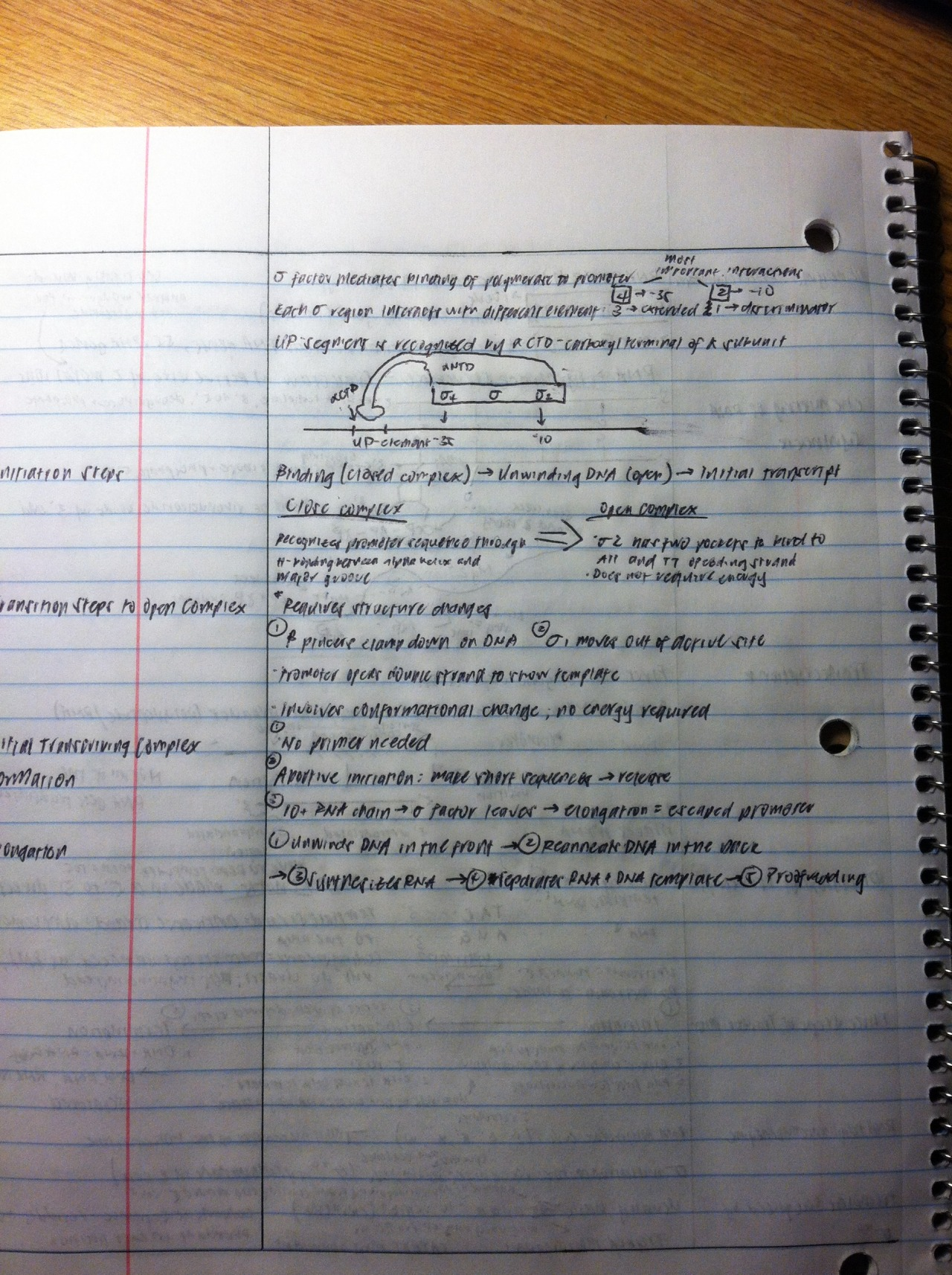 I finally got my cryptic penmanship back! :D I've been taking too many notes with my laptop.