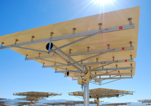 """As World's Largest Solar Thermal Plant Opens, California Looks to End Solar Wars """"After controversy over a threatened species delayed several large solar projects, state officials are trying to broker an agreement between conservation groups and solar companies on a path forward for renewable energy."""" Learn more in the latest radio story from KQED Science."""