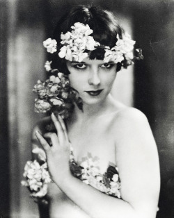 aclockworkpink:  Actress Louise Brooks, 1920's