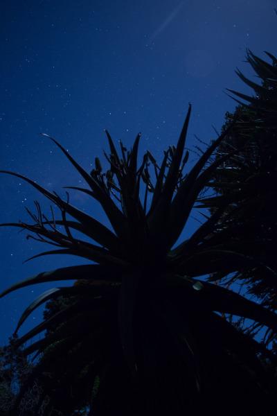 #photographers_on_tumblr, #astrophotography
