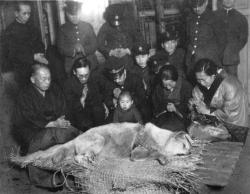 mediwriter:  A rare last ever picture of Hachiko at his funeral,a dog who changed the way dogs were seen by the world forever. :) For those who don't know- In 1924 at the University of Tokyo, professor Ueno took in Hachikō, a golden brown Akita, as a pet. During his owner's life, Hachikō greeted him at the end of each day at the nearby Shibuya Station. The pair continued their daily routine until May 1925, when Professor Ueno did not return that day. The professor had suffered from a cerebral hemorrhage and died, never returning to the train station where Hachikō was waiting, Still every day for the next nine years the dog waited hopefully at Shibuya station to see his owner once more,he died aged 11,still waiting for his owner to arrive. :) - - - The second movie that made me go crey crey. And just reading about it made me cry again. T-T Huuuuu. I'm so soft-hearted talaga but then, it's Hachikooooo. T-T