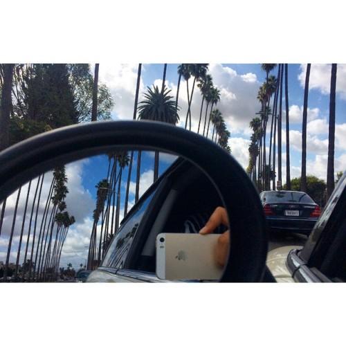 🌴 these #trees 🌴 #good_morning  🌍 that #bluesky🌏 #good_night  #amazing #photopftheday #nature #cali #calilife #calieveryday #udurtnegzurag #laeveryday #la #waiting #earlybird 😁 #aynaphotography ☺️  (at City of Los Angeles)