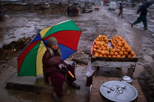 fotojournalismus:  Pakistani boy, Haroun Matiullah, 11, holds an umbrella to shelter himself from rain, while sitting on a roadside hoping to sell his oranges, on the outskirts of Islamabad, Pakistan on March 14, 2013. [Credit : Muhammed Muheisen/AP]