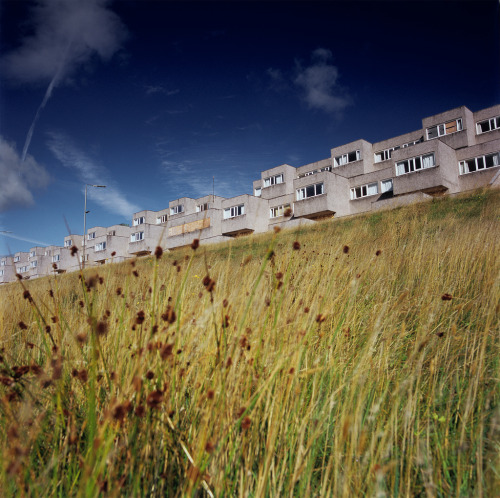 architectureofdoom:  The abandoned student housing blocks at St. Andrew's College (formerly Notre Dame College), Bearsden (Scotland) Gillespie, Kidd and Coia, 1968-9