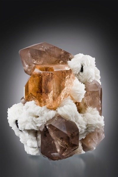 breathemystardust:  bijoux-et-mineraux:  Topaz and Smoky Quartz on Albite  wow