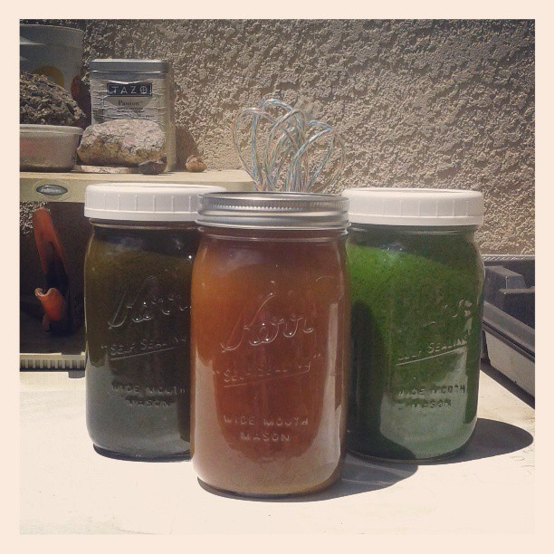 Woke up and made juices plus an elixir. Felt like a detox sort of day. On the left is juice made with carrots, apples, kale, red chard, celery and ginger; middle is spring water mixed w/ raw coconut sugar, the juice of two lemons & sprinklings of both cayenne pepper and turmeric powder; right is dandelion greens, parsley, cilantro, green apples, celery, key limes, and ginger